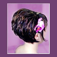 Frisuren-Bob von Hinten 2013